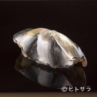 くろ﨑 - 初夏に食したいネタの代表。絶妙の〆加減で旨みを引き出した『シンコ』