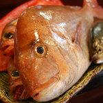 旬菜厨房 海月 - 料理写真:毎日市場から天然の鮮魚が!旬のお魚が楽しめます