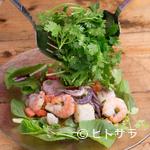 eL MamBo - 地元のの農家で大切に育まれたパクチーがたっぷり『魚介のパクチー山盛りスパイシーサラダ』