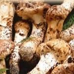 松茸屋魚松 - 全国から選りすぐりの松茸
