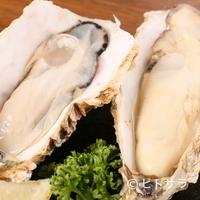 喜八 - 鮮牡蠣(厚岸産)