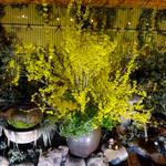 郷土料理おいどん - 庭園を望むお席からの撮影です♪(4月下旬)
