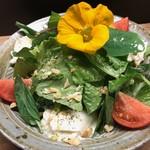 ABRACADABRA博多薬膳鍋 - 高糖度トマトとブラッターチーズのサラダ
