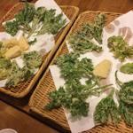 ん。 - 20170425、天ぷら。春の摘み草いろいろ。