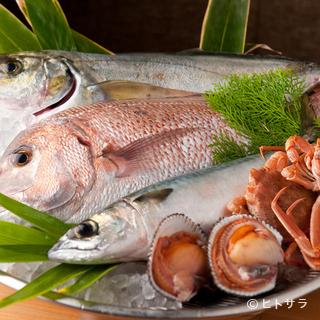 旬を大切に、食材が持つ魅力を活かした料理の数々