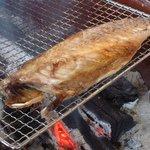 海鮮本陣 魚祭 - 灰干しさば