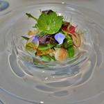 66265330 - イタヤガイと季節野菜のサラダ仕立て、カリフラワーのピューレと共に