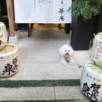 恵比寿 箸庵 - アンジェリーナと共に〜♬