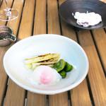 恵比寿 箸庵 - ホワイト・アスパラと空豆