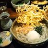 手打吉兆 - 料理写真:おろしぶっかけ蕎麦