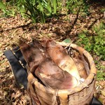 竹仙郷 - 背負子いっぱいの筍