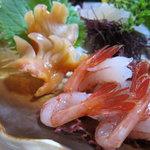天狗鮨 - 赤貝・えび