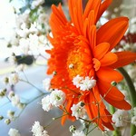 ハイズ カフェ - ちょっとした花