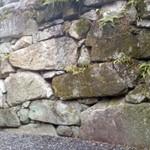 66418875 - いろんな石組みが見られます。