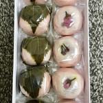 菓子処たかはし - 春限定 桜まんじゅう 10個入り 1080円
