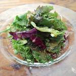 Brasserie24℃ - ランチの水菜、サニーレタス、紫キャベツのシンプルなサラダ