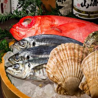 見た目にも鮮やか♪毎朝獲れたて新鮮な鮮魚をお届け♪