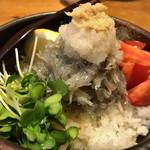 あわ路飯店真心  - ★★★☆ 生しらす丼 さっぱりと大根おろし、生姜、ポン酢で頂きます