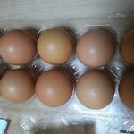 道の駅 伊勢本街道 御杖 - 卵の色が微妙に違います