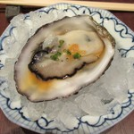 鮨 日本橋 鰤門 - 生牡蠣
