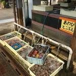 木下鮮魚店 -