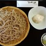 蕎麦・酒 青海波 - 辛み大根おろし蕎麦大盛