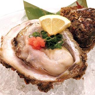 輪島産天然岩牡蠣はこれからが旬!