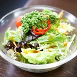 ネパール家庭料理 ホワイトヒマラヤ - ミニグリーンサラダ