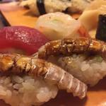 新中野まとい寿司 - 全種 1貫180円! しゃこがある〜(^-^)私用