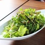 横浜肉バル 502 - パクチーのグリーンサラダ
