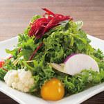 土古里 - 旬の酵素サラダ(国産柑橘ノンオイルドレッシング)