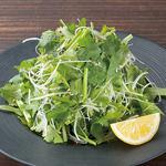 土古里 - 農園直送パクチー使用 パクチーサラダ