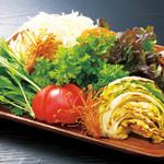 豚料理専門店 銀呈 - ジャングルサラダプレート