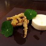 ステラ カデンテ - 新玉葱の旨味堪能しました…(ᐥᐜᐥ)♡ᐝ