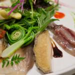 66762272 - イタリアンサラダ Variante風(スペルト小麦と浅利のパンツァネッラ、貝類と山菜のインサラータ)