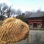 6678248 - 根津神社と鯛焼き