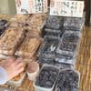 豆の大沢屋 - 料理写真: