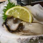 66850313 - 隠岐の岩牡蠣