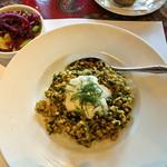 チャイカ - スメタナとディル風味のオリジナルカレーとミニサラダ (ランチセット)