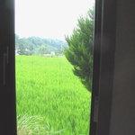 イタリア料理 カンタレーレ - 窓からの田園風景 08/08