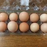 八竜産直センター メロディアン - 比内地鶏生たまご