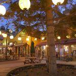 66958907 - 先日、青森市内を観光中にパサージュ広場へ。この広場には色々な飲食店が多く林立していましたが
