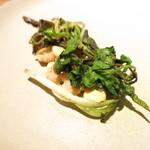 66980612 - 春の山菜 カタクリとカタリの花 シドケ ウコギ リードボーのフリット カラスミのソース