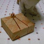Schwestern Haus - 包装状態・・・愛犬がお相伴したくて待機してます。