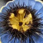 温泉旅館 矢野 - 料理写真:松前産 殻付生ウニ
