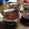 田代 - 料理写真:鰻丼並