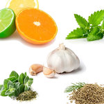 T's キューバサンド - 柑橘系フルーツとエキゾチックなスパイス、香り高いハーブの融合。