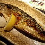6707520 - 「焼き魚定食」鯖の塩焼き