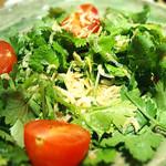 燻製と地ビール 和知 - ジャコとパクチーのサラダ