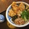 讃岐うどん 雅流 - 料理写真:鶏天おろしぶっかけ(冷)